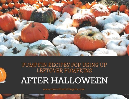 7 Pumpkin Recipes for Pumpkins Leftover from Halloween!