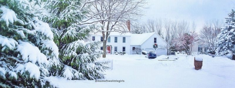 Christmas In New York State