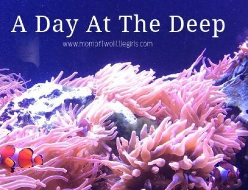A Day At The Deep