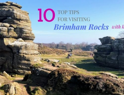 10 Top Tips For Visiting Brimham Rocks With Kids