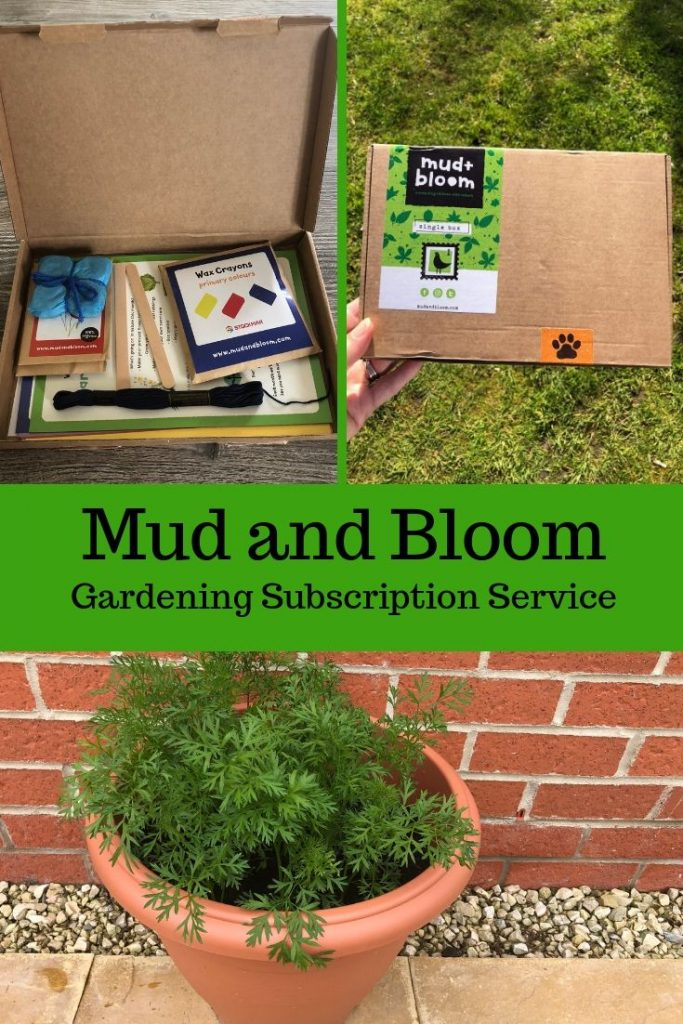 mud and bloom pin