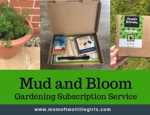 The Mud And Bloom Box | Gardening Subscription For Kids
