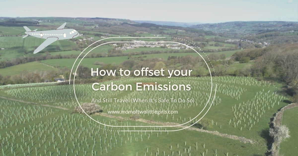 how to offset your carbon emissions with make it wild