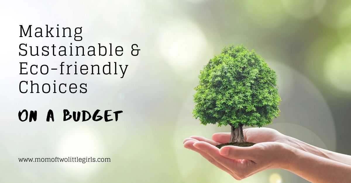 making sustainable and eco-friendly choices on a budget