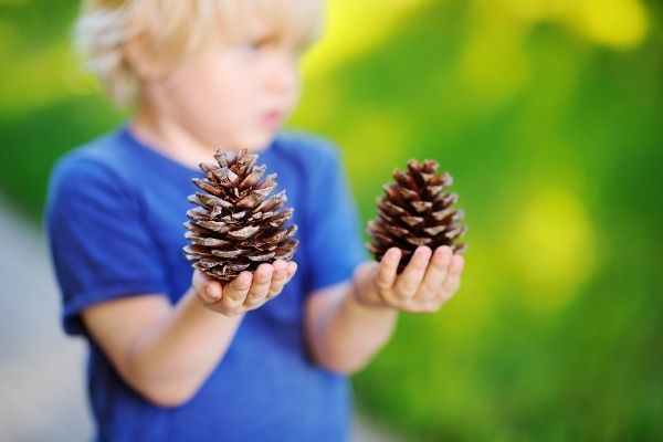 sensory play outdoor learning for children