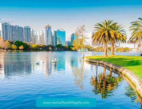 Why Move to Orlando – The City Beautiful