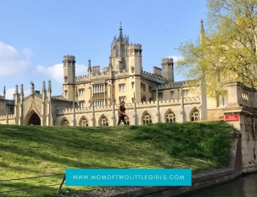 Exciting Things To Do On A Weekend in Cambridge