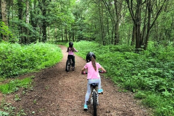 Riding bikes In Bishop Wood, Selby District, North Yorkshire